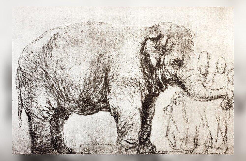 Rembrandt nägi Hanskenit 1637. aastal Amsterdamis ja tegi loomast mitui joonistust. Foto: Wikimedia Commons