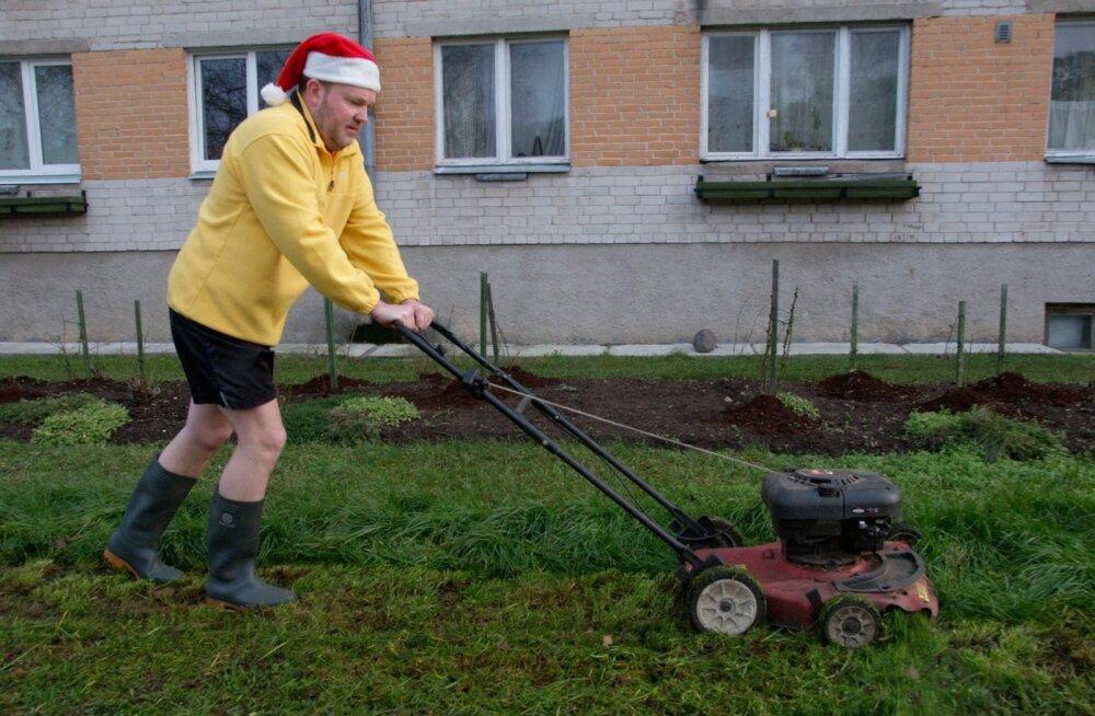 Sulev Oll, 2006