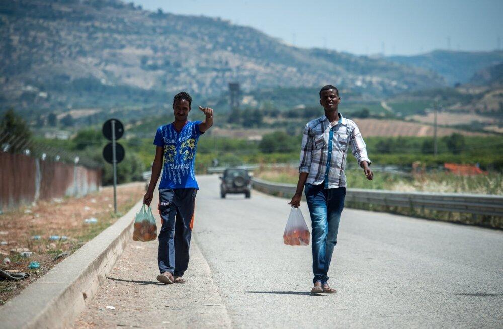 Somaallastest pagulased tulevad kõrval asuvast apelsiniistandusest, mis paistab olevat pagulaste maiustamispaik. Raksus käiakse tihti.