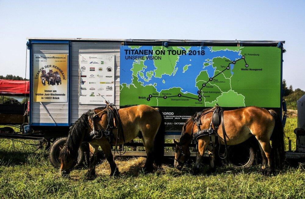 """ФОТО читателя Delfi: """"Лошади несут мир"""" — занимательная акция пройдет из Германии в Россию через Эстонию"""