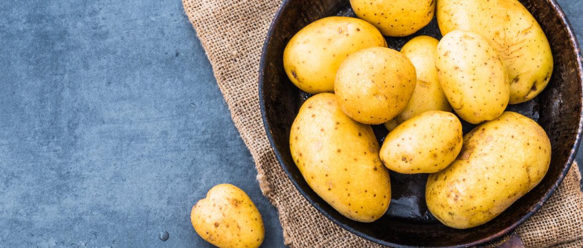 Kuidas peaks kartulit keetma? Kuumas või külmas vees? Koorega või kooreta?