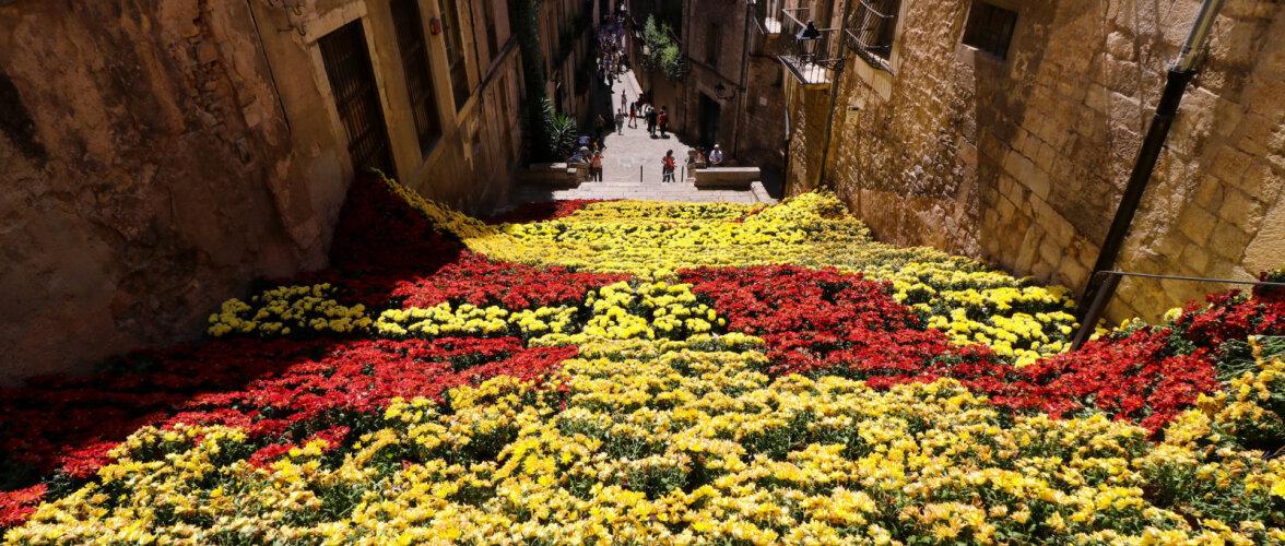 ФОТО: Испанская Жирона утопает в цветах