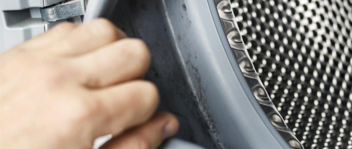 Kui pesumasinas on halb lõhn, vaadake üle, ega tihendite vahele pole mustust ja hallitust kogunenud.