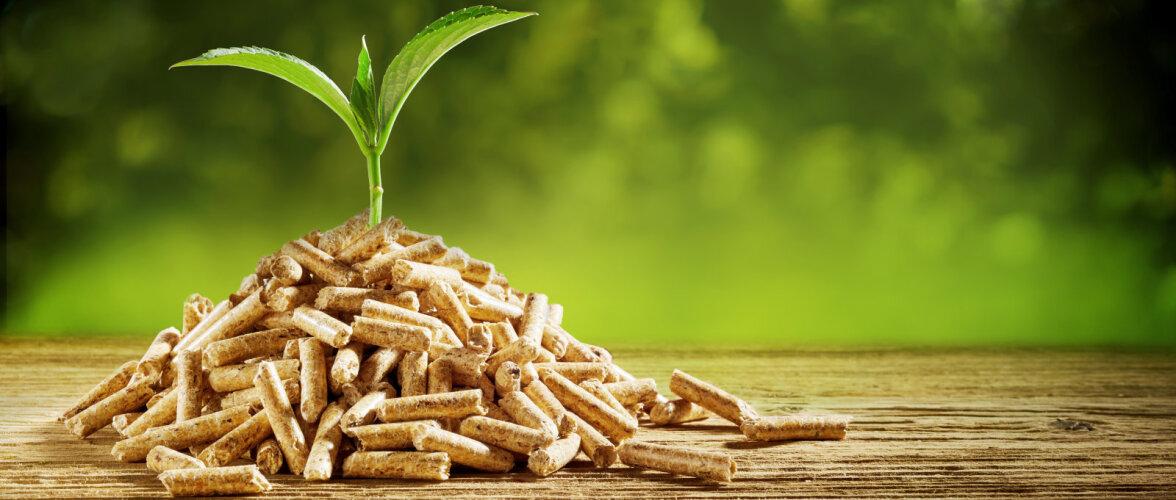 Mis on pelletiküte ja millal seda eelistada?