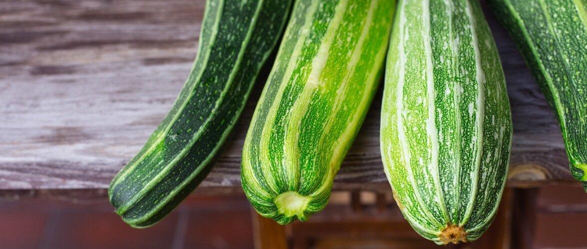 RETSEPTID: Augustikuiselt lahedad toidud suvikõrvitsast