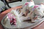 BRESSE KANA: Kas maailma kallimast kanast tuleb ka maailma parim puljong?