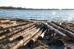 Sõrve randa uhutud puidulast
