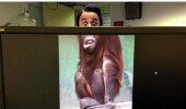FOTOD | Mis saab siis, kui inimestel on tööl igav?