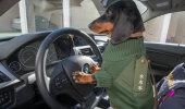 PÄEVA ANEKDOOT: Politseikoera ametisaladus