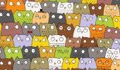 PILTMÕISTATUS VOL 2: Ajab silmi hõõruma! Terve maailm otsib öökullide seast kassi, kas sina leiad?