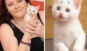 See eriline kassipoeg on üle maailma kuulsust kogunud. Miks? Vaata ta ilmet!