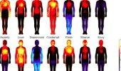 Inimeste emotsioonid kaardistatud! Vaata, kus keha piirkonnas kogeme armastust, hirmu, valu ja muid tundeid!