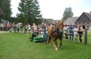 Eesti hobuse päev Kurgjal.