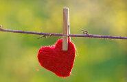 Alar Ojastu: kus on armastus?
