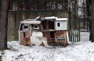 ФОТО читателя Delfi: Сердобольные автовладельцы соорудили дом для уличных котов