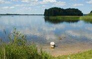Житель Вильнюса на дне озера обнаружил танк