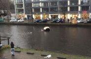 VIDEO: Amsterdamis päästsid möödakäijad uppuvast autost ema ja lapse