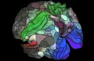 Aju, nagu seda nüüd tunneme: teadlased kandsid kaardile ligi 100 uut piirkonda