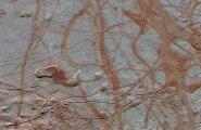 Jupiteri kuu Europa ookeanis võib leiduda elu