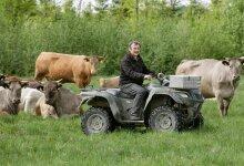 """""""Ostan oma karja t�ienduseks  ainult puhtat�ulisi loomi,""""  kinnitab Aldo Vaan heleda  akviteeni karja keskel.  Seda t�ugu mullikaid on  ta toonud nii Rootsist  kui Saksamaalt, et are- tada puhtat�uline kari."""