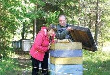 Mahemett maiustatakse mesik�paga v�idu