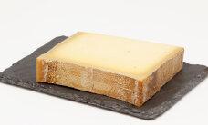Prantslaste elektrijaama hoiab käigus... juust