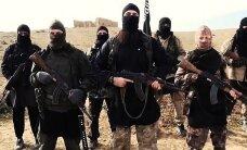 Немецкая газета: в ИГ обучают боевиков притворяться беженцами