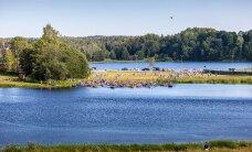 Rõuge Suurjärv sai 180 uut elanikku