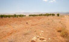 Eestlaste röövijaid otsinud politseinikud said Bekaa orus haavata