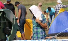 Алексей Семенов: сохранение миграционной квоты несет куда больше рисков, чем ее отмена