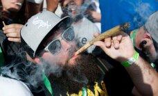 WikiLeaks раскрыл заговор алкогольного лобби против легальной марихуаны