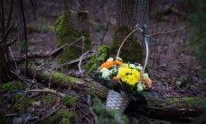 В убийстве 14-летней нарвитянки Дарьи подозреваются двое