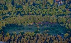 Keskkonnaministeerium kutsus keskkonnaorganisatsioonid uuesti metsaseaduse muudatusi arutama