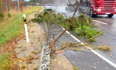 Ломающий деревья штормовой ветер нарушает движение на шоссе Таллинн-Тарту