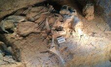 Mis tappis 24-pealise mammutikarja kümneid tuhandeid aastaid tagasi?