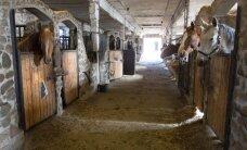 Riik võtab Toris hobuste ohjad enda kätte