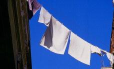 Zave.ee ostusoovitus: kuni 40 protsenti odavamad pesuvahendid