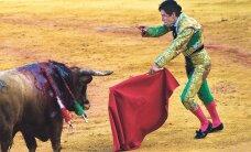 Впервые с 1985 года на корриде в Испании погиб матадор
