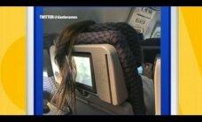 FOTO, mis on vallutanud interneti: naise juuksed tekitasid kaasreisijas sügavat hämmeldust
