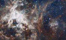 10 популярных научных заблуждений, в которые давно пора перестать верить