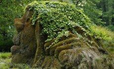 Põlisrahvaste iidsete traditsioonide 3 ühisjoont: esivanemate, looduse ja nähtamatu maailma austamine