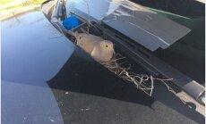 Südamlikud FOTOD: Politseinikud tegid patrullauto kapotile pesa teinud tuvile elu supermugavaks
