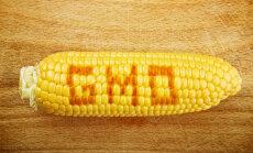 Kui sa ei pea õigeks, et Pomerants hääletab reedel Euroopa Komisjonis GMO Eestisse lubamise poolt, siis kirjuta keskkonnaministrile juba täna!