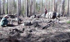 MAALEHT SOOMES: Soome metsamehed süütavad sihilikult omi metsi