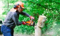 Keskkonnaminister Marko Pomerants saeb läbi tõkked metsa ja metsasõprade vahel.