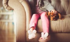 Kuidas mõjutab lemmikloom sinu vanemate või lapse tervist?