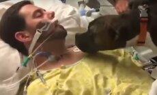 VIDEO, mis puudutas inimeste südameid: koera üliliigutav hüvastijätt omaniku viimsetel hetkedel
