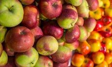 Säilima pandud õunad tasuks nüüd tasapisi ära tarvitada.