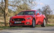 Ford Mustang, poniauto kuues ilmutus petroseksuaalidele