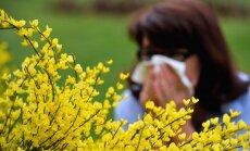 Teadlased uurisid välja, miks ja kuidas tekib allergia